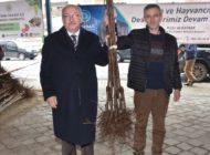Tekirdağ Büyükşehir Belediyesinin Çiftçiye Desteği Sürüyor
