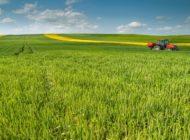 Tekirdağ, Tarım ve Hayvancılıkta Örnek Olmaya Devam Ediyor